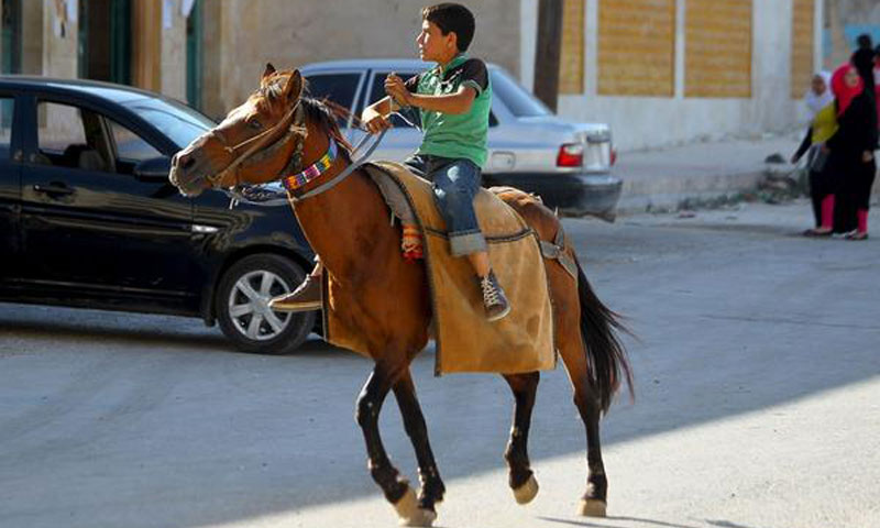 Syrian child riding a horse in the city of Idlib after hearing the sound of an air raid - July 18 2017 (AFP)